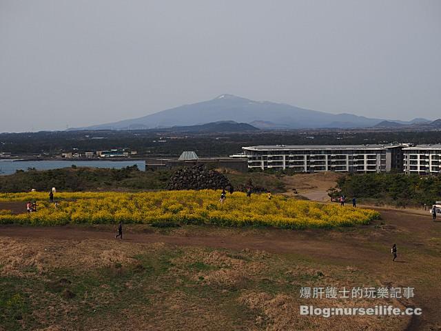 【濟州島】涉地可支(섭지코지) Sopjikogi 最多電影拍攝的景點 - nurseilife.cc
