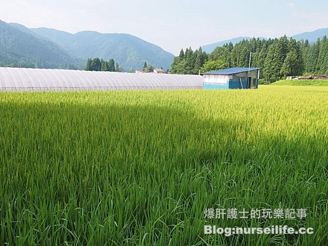 【秋田住宿】農家民宿星雪館 農事體驗住宿之旅 - nurseilife.cc