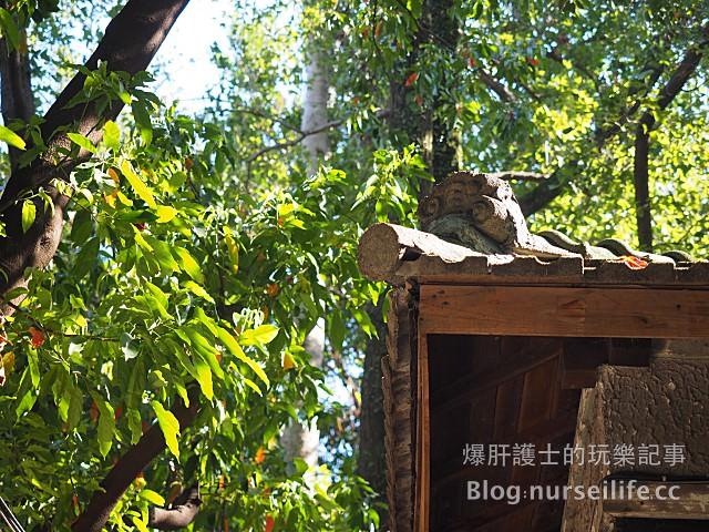 【台北旅遊】永康街 青田七六 超有特色的日式宿舍咖啡館 - nurseilife.cc