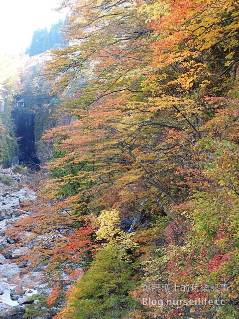 【日本賞楓】東北秋田紅葉景點 小安峽大噴湯 Oyasu-kyo Ravine Daifuntou - nurseilife.cc