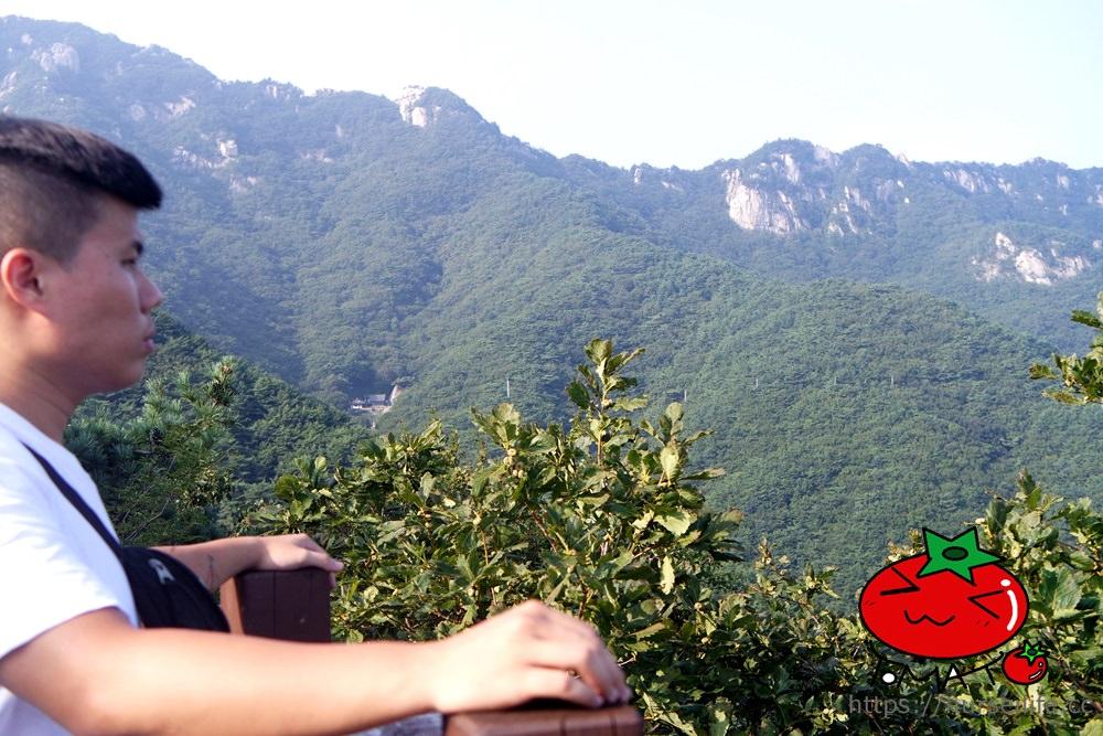 台灣虎航飛大邱!大邱景點、美食、地鐵、住宿整理 讓你第一次自助就上手! - nurseilife.cc