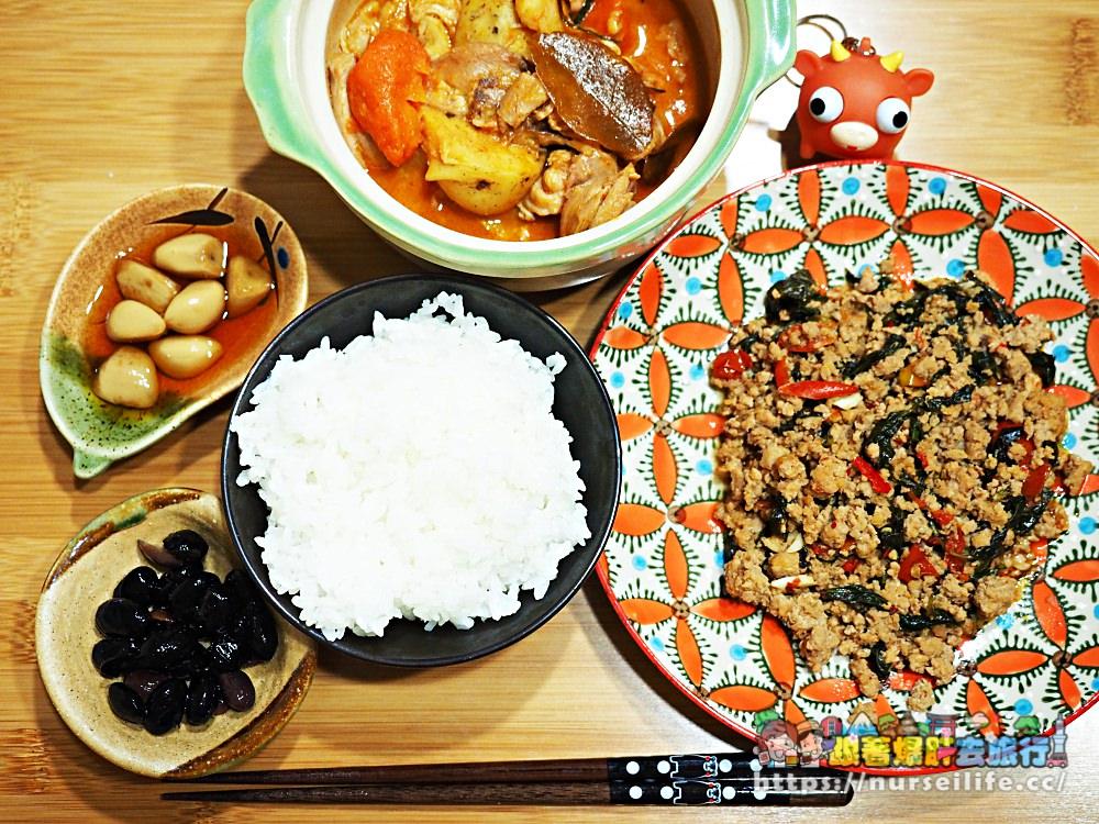 超下飯!方便好吃的泰印料理即時包 - nurseilife.cc
