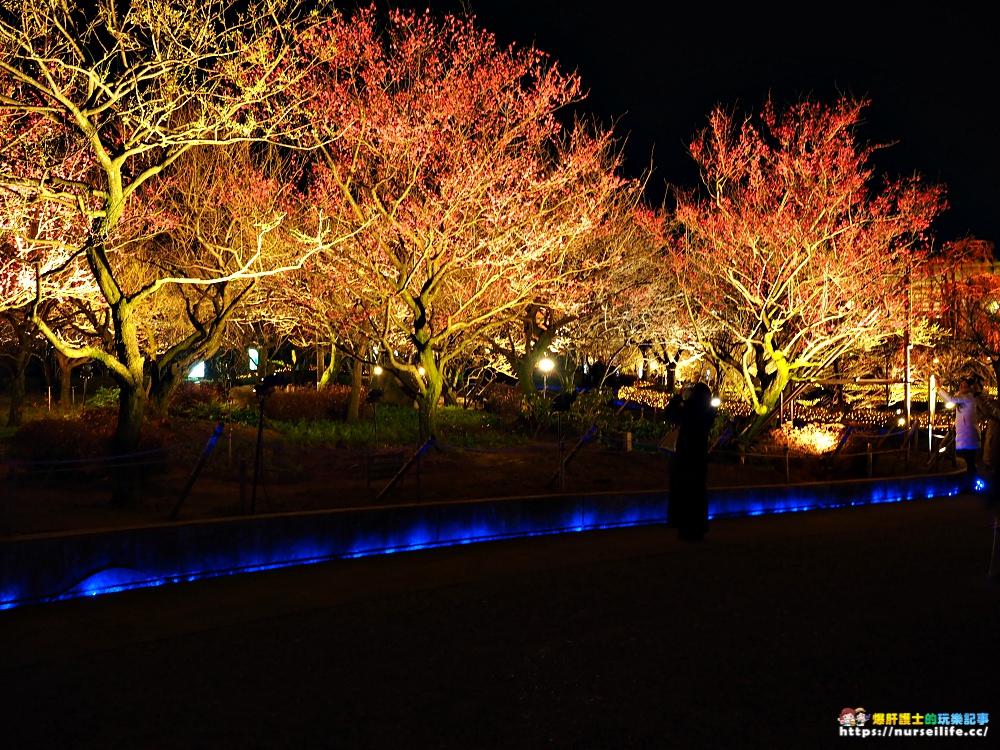 三重、桑名|名花之里なばなの里.夜遊賞燈海享受冬日的浪漫 - nurseilife.cc