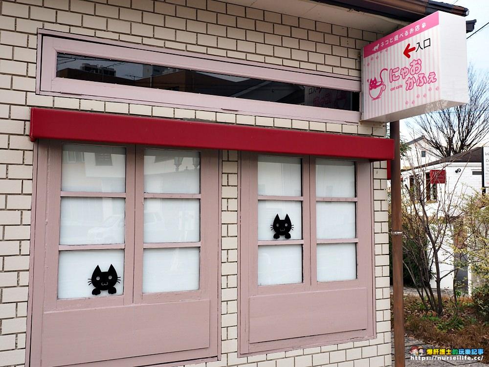 愛知、半田|にゃおかふぇ貓咖啡館.體驗被貓療癒的空白時光 - nurseilife.cc