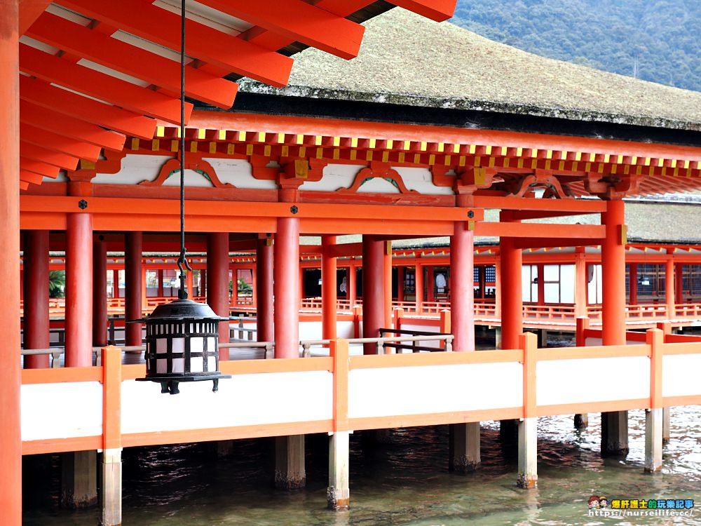 日本、廣島|宮島嚴島神社再訪牡蠣之美.小心會吃JR pass的鹿 - nurseilife.cc