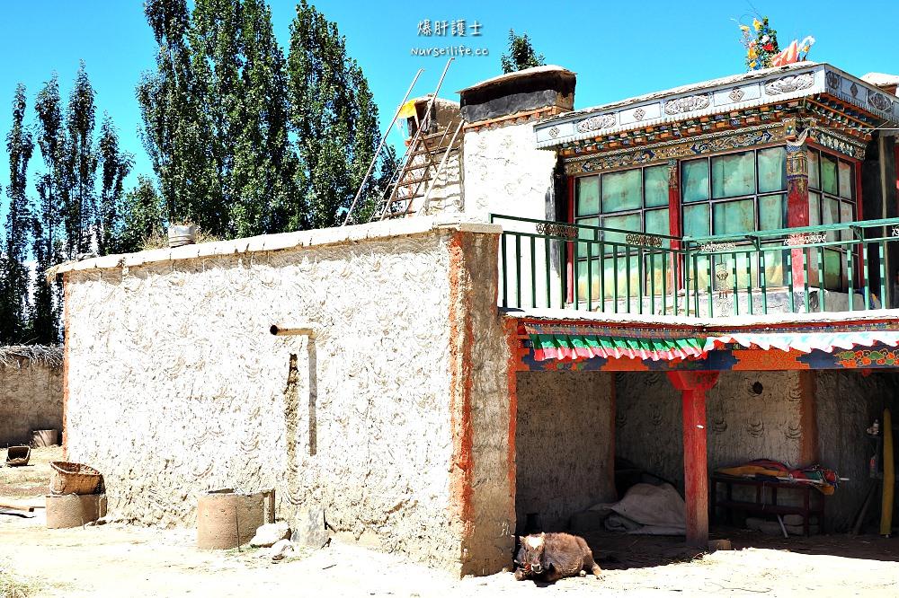 中國、西藏 日喀則羅林村.藏人生活一日體驗 - nurseilife.cc