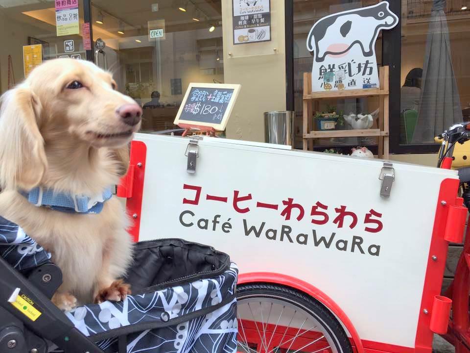 《臘腸狗丫妞的吃喝日記》📍コーヒーわらわら Cafe WaRaWaRa📍@天母 - nurseilife.cc