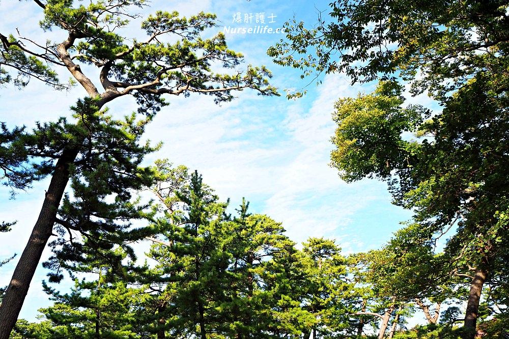 秋田|象潟九十九島.稻田版的松島絕景 - nurseilife.cc