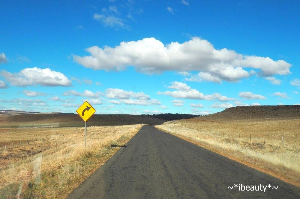 澳洲自駕注意事項:不同的行車習慣與常見交通號誌 - nurseilife.cc
