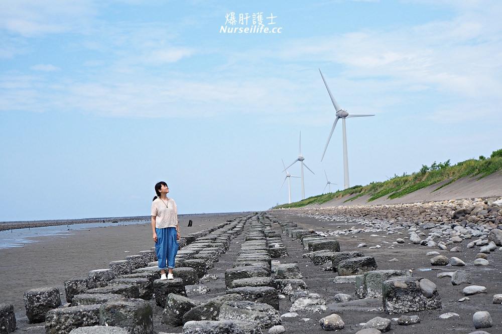彰化芳苑王功吃蚵嗲曬太陽之旅 - nurseilife.cc