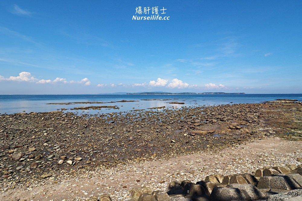 日間賀島的景點與交通.來趟名古屋的離島渡假之旅享受章魚海鮮大餐 - nurseilife.cc
