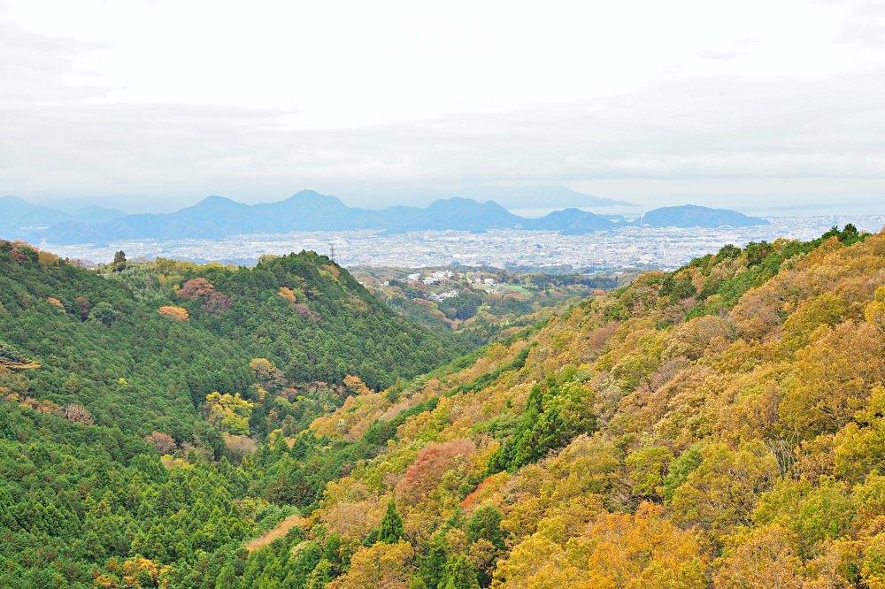 靜岡 三島大吊橋(天空步道).充滿體驗活動的日本第一長的吊橋 - nurseilife.cc