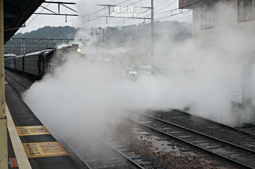 靜岡|大井川鐵道Thomas蒸氣火車之旅 - nurseilife.cc