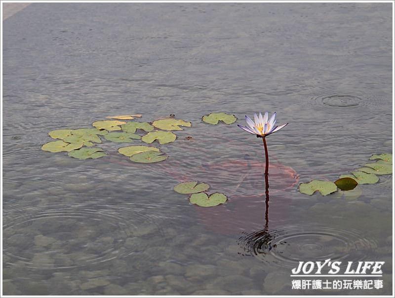 【花蓮】優雅而緩慢的旅行,緩慢民宿。 - nurseilife.cc
