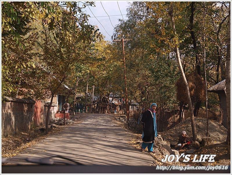 【印度】前往渡假勝地Pahalgam,途經番紅花產地喝番紅花茶~ - nurseilife.cc