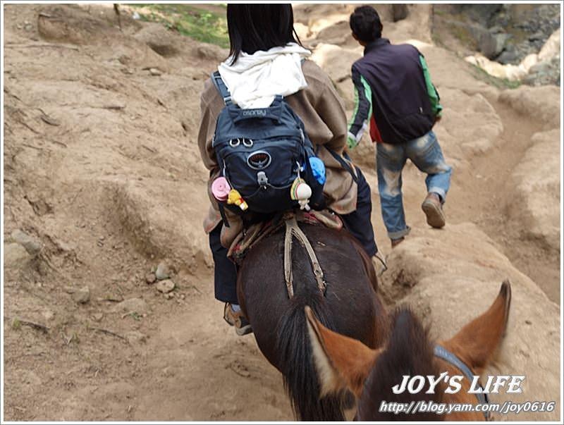 【印度】騎馬下山逛市集及千年古廟 - nurseilife.cc