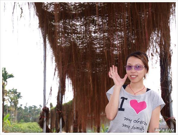 【南投】我在杉林溪深呼吸!! - nurseilife.cc