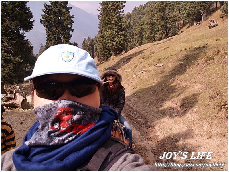 【印度】Pahalgam騎馬趣Kashmir Valley篇 - nurseilife.cc