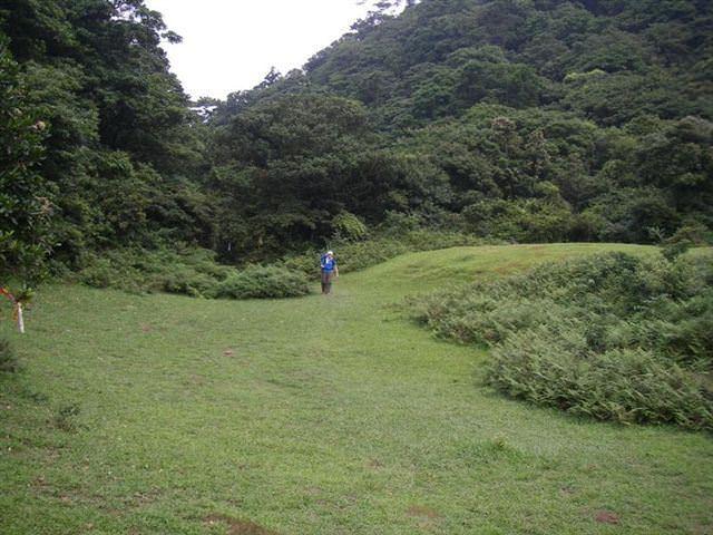 富士坪古道--超級舒服的草皮地毯 - nurseilife.cc