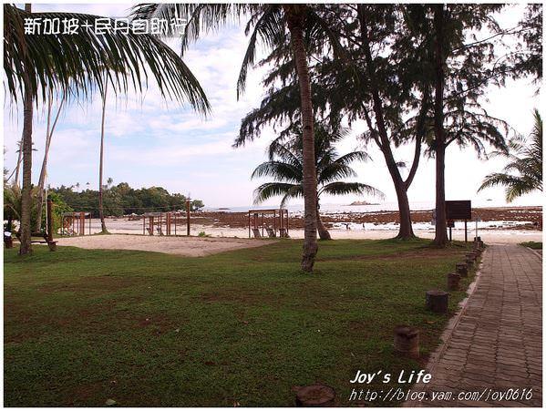 民丹島→新加坡│享受在渡假村的最後時光 - nurseilife.cc