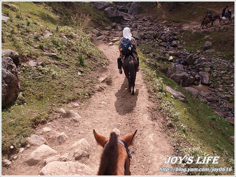 【印度】Pahalgam騎馬記之前進Baisaran - nurseilife.cc